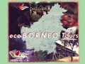 Eco Borneo Tours